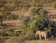 South Africa 2018 web-244