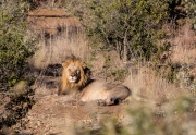 South Africa 2018 web-295